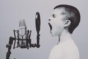 microphone online business aufbauen